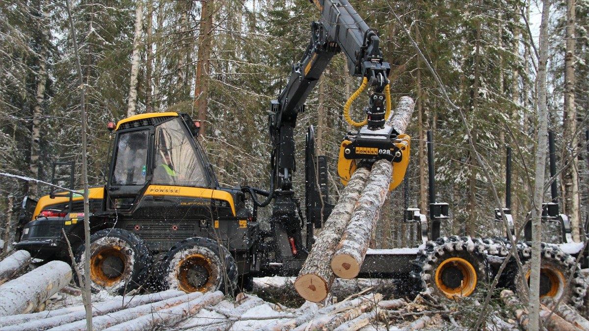 Компания «Свеза» увеличивает объемы ирасширяет географию собственной лесозаготовки