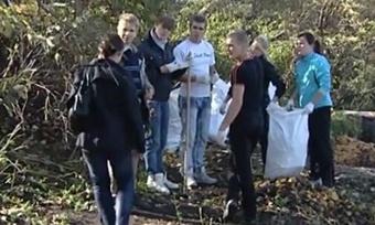 Более 15тысяч жителей Вологды приняли участие вобщегородском субботнике