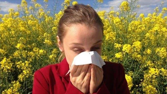 Советы специалиста: профилактика сезонной аллергии