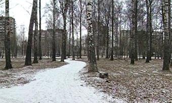Первый снег ожидается наВологодчине