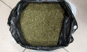 Очередную партию марихуаны изъяли череповецкие оперативники