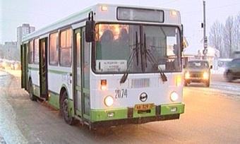 Проезд вобщественном транспорте Вологды вновогоднюю ночь будет бесплатным
