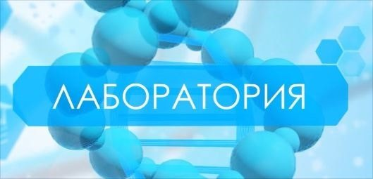 Лаборатория13.04.20