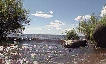 Под Вологдой утонул <nobr>33-летний</nobr> мужчина
