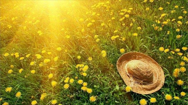 Каким будет лето?