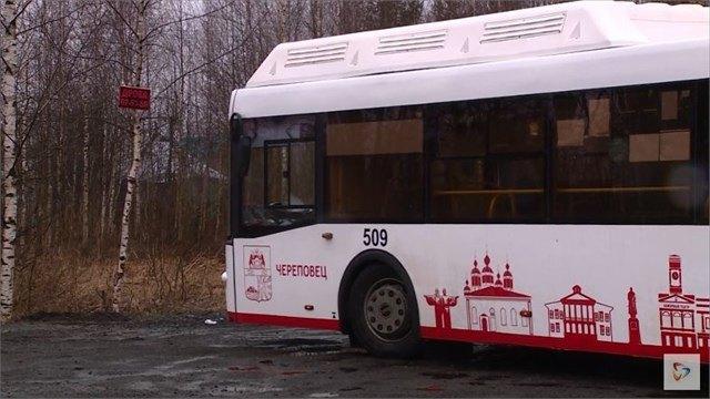 Первые автобусы повезут череповчан надачи уже вконце этой недели
