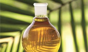 Пальмовое масло станет заметнее