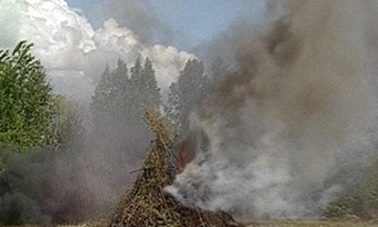 Вологжане нажгли костров натри миллиона рублей
