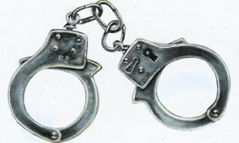Международного преступника задержали вологодские полицейские