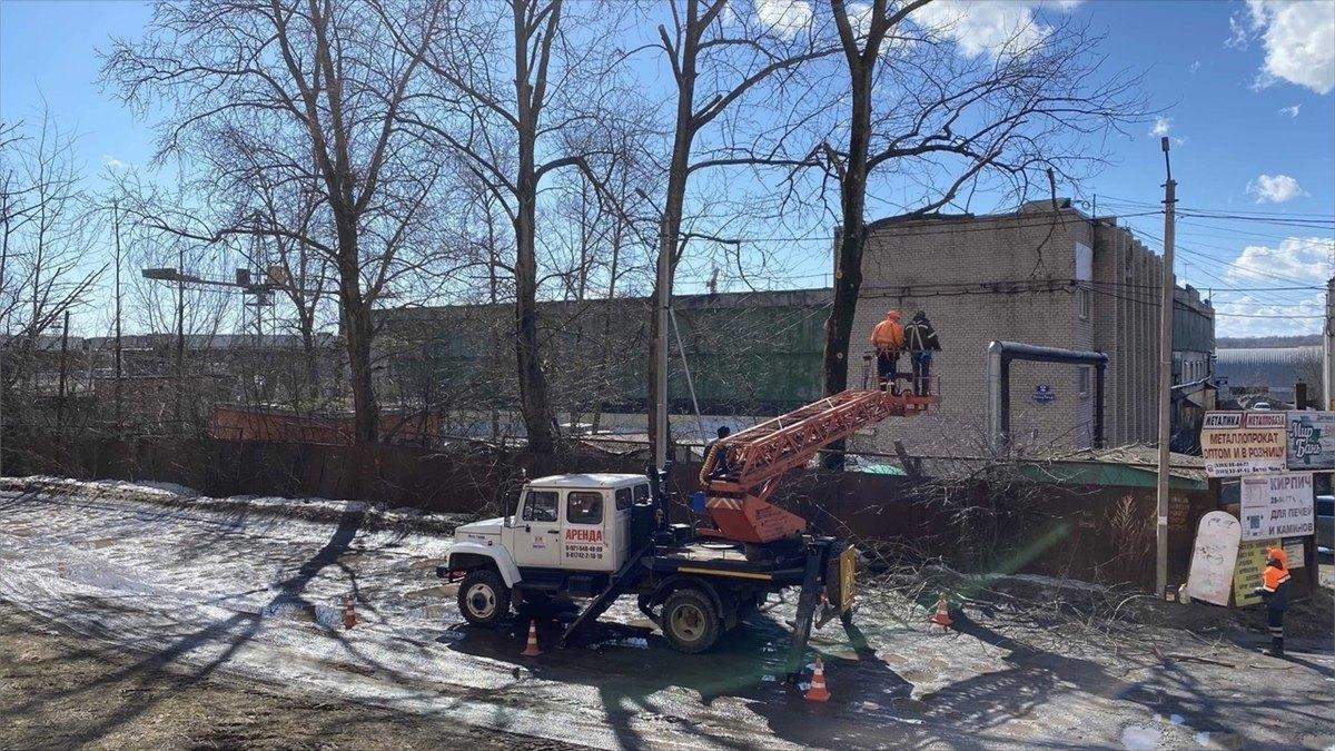Санитарной обрезкой деревьев вЧереповце займутся профессионалы