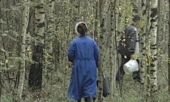 Десять человек заблудились ввологодских лесах