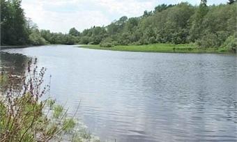 4-летняя девочка вместе сотцом утонула вШекснинском районе