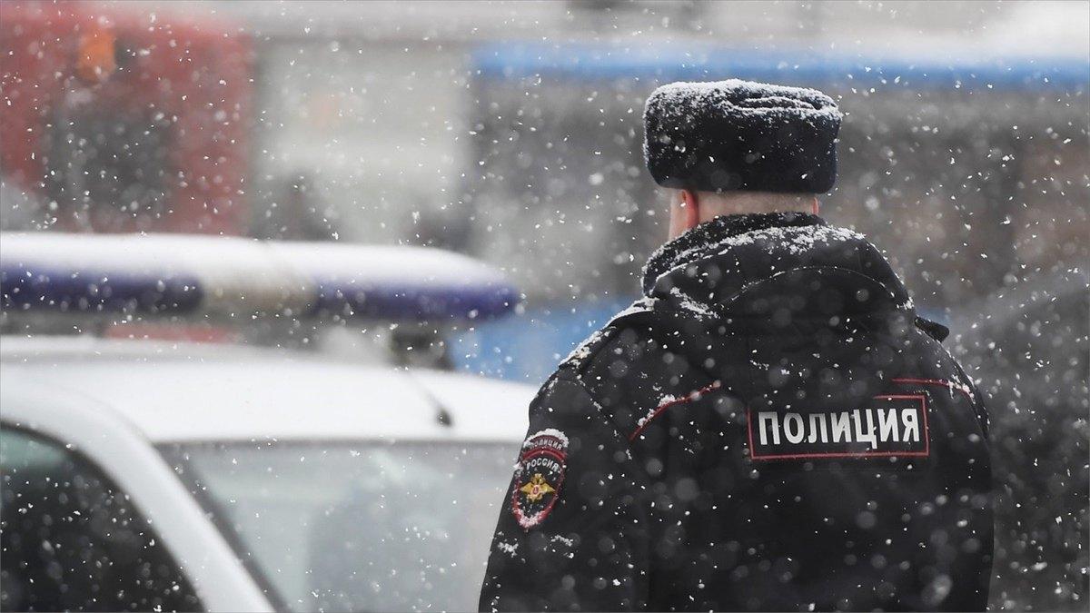 Полицейские изВеликого Устюга раскрыли кражу изхозяйственной постройки