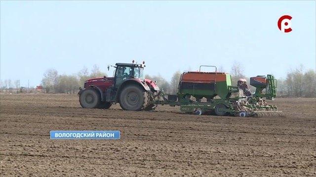 Около 140 тысяч гектаров полей засеют наВологодчине вэтом году