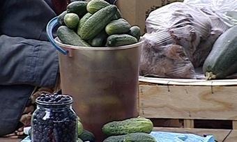 Бабушки согурцами стали конкурентами рынка вЧереповце